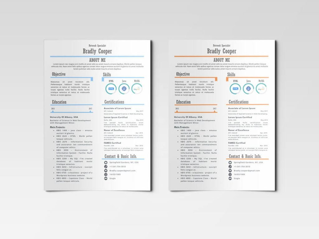 Aloha-01_Orange and Light blue_ Infographic Resume Template